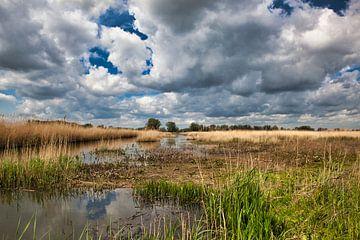 Munnikenland, Bommelerwaard von Ad van Kruysdijk