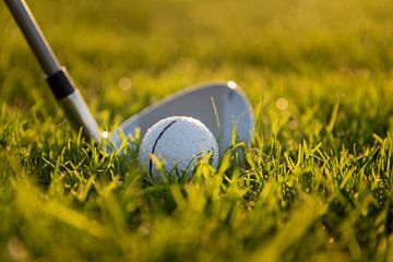 Golfball im Gras von Manon Ruitenberg