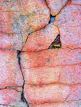 Crack van Caroline Lichthart