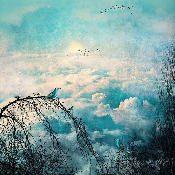 HEAVENLY BIRDS III-B van Pia Schneider