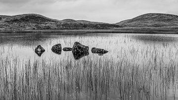Felsen im See von Timo Bergenhenegouwen