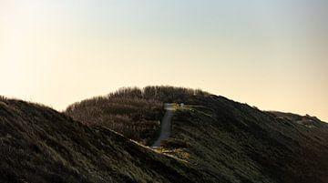 Golvend duinpad in de duinen van Dishoek van Percy's fotografie