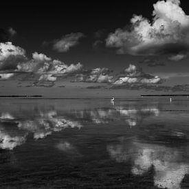 Wolken reflectie in het water met zilverreiger op de achtergrond sur Michèle Huge