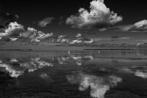 Wolken reflectie in het water met zilverreiger op de achtergrond