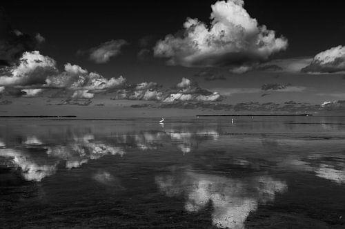 Wolken reflectie in het water met zilverreiger op de achtergrond van