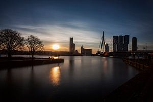 Rotterdam, A city awakes