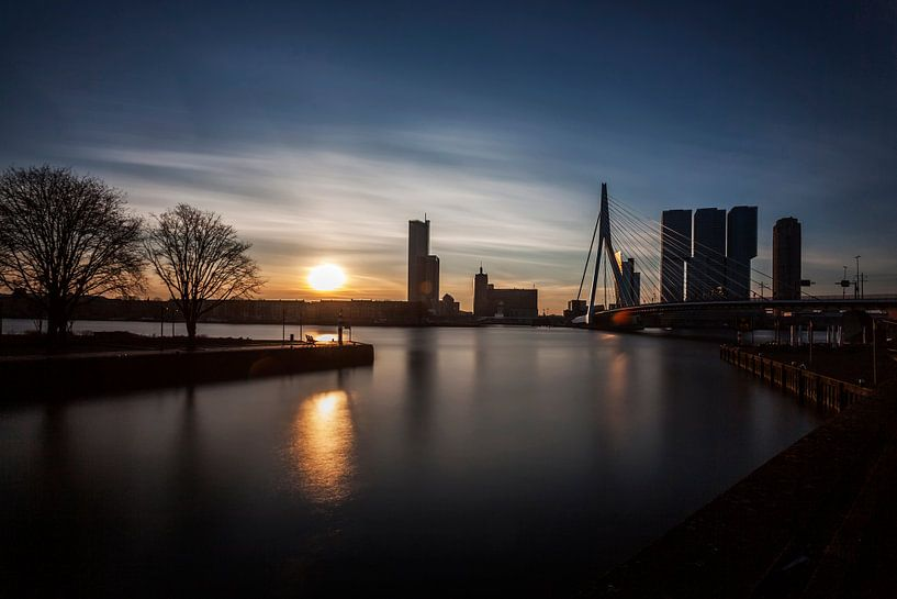 Rotterdam, A city awakes van 010 Raw