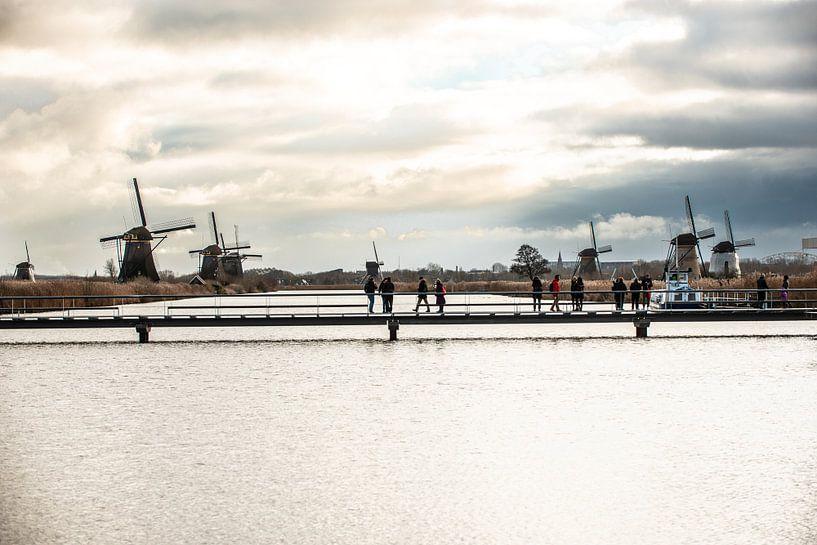 Kinderdijk 2019 van Brian Morgan