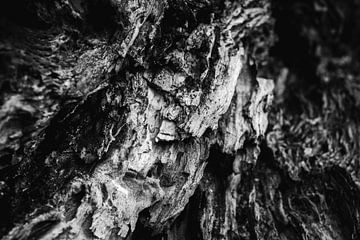 Abstrakter Baum von Marjolijn Maljaars