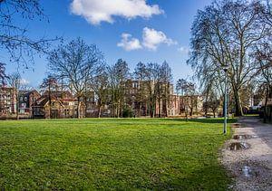 Huizen in het Torckpark in Wageningen van TwentePics