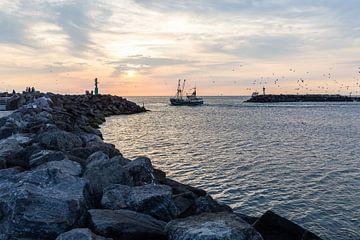 Hvidesande Hafen sur Matthias Nolde