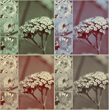 Vintage bloemencollage van Christine aka stine1