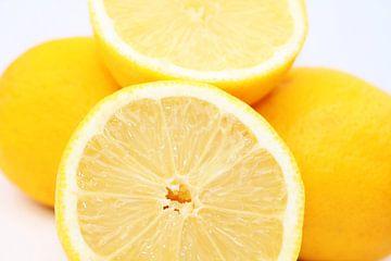 Zitrone von Augenblicke im Bild