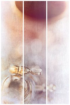 Sanborn (met ervaring) van Bob Daalder