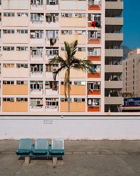 Orangefarbenes Wohnhaus im Choi Hung Estate in Hongkong mit Palme von Michiel Dros