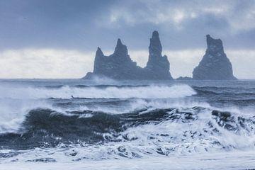 Beginnende sneeuwstorm van Karla Leeftink