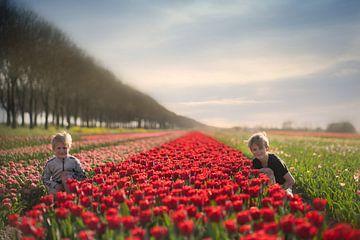 kinderen bij een tulpenveld in nederland van Kim Groenendal