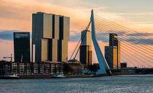 De Rotterdam en Erasmusbrug in Rotterdam in het laatste avondlicht