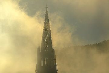 Tagesintro Freiburg von Patrick Lohmüller