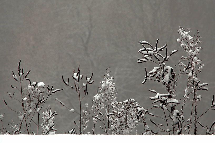 Wintertafereeltje van Berend Doornenbal