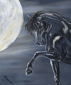 Paard en maan van Monique Schilder