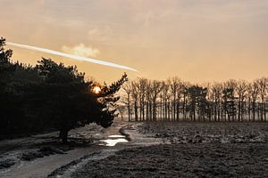 Winterlandschap met zonsopkomst Bussumerheide