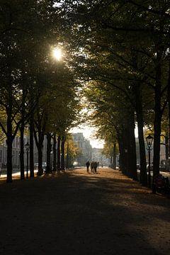 Herbst in der Stadt von Martijn Stoppels