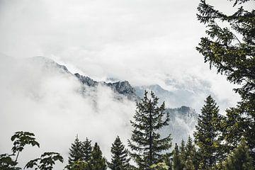 Berge im Nebel von Sebastian Witt