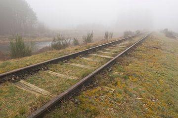 Oude spoorlijn Borkense Baan€ nabij de Duitse grens in de g von Tonko Oosterink