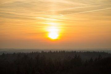 Avond boven het bos van Marko de Jong
