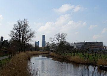De Potmarge en Bonnema; samengaan van natuur en stad in Leeuwarden van Tineke Laverman