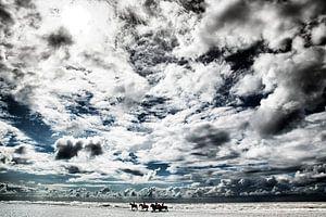 Amazones maken wandeling in zee onder een zwaar wolkendek
