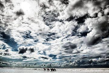 Amazones maken wandeling in zee onder een zwaar wolkendek van Jan Sportel Photography