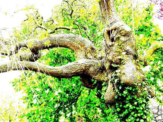 Tree Magic 185 van MoArt (Maurice Heuts)