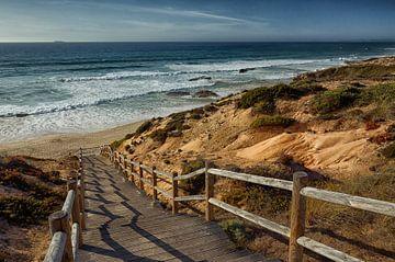 Duinlandschap in de Alentejo, Portugal van Iris Heuer