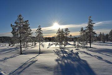 Sneeuwlandschap von