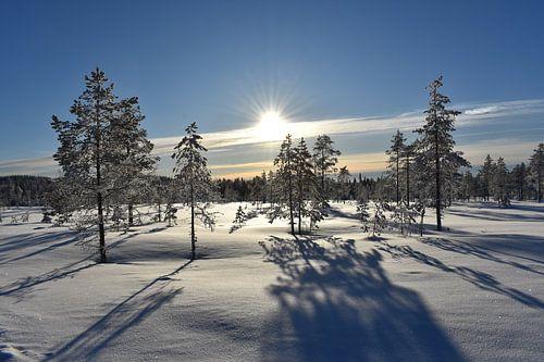 Sneeuwlandschap von M M