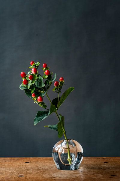Foto   tak met rode bessen   botanisch   modern stilleven van Jenneke Boeijink