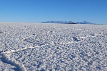 salar de uyuni (zoutvlaktes) saltflags van Marlou van Hal