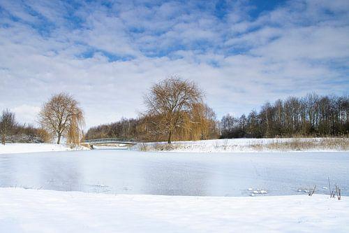 Winterlandschap in de polder
