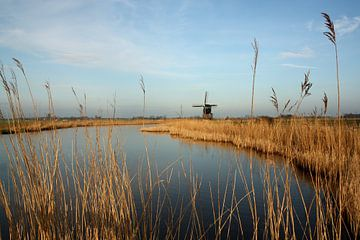 Hollands landschap van Jelle Ursem