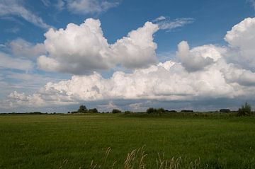 Wolken von Alexander van der Sar