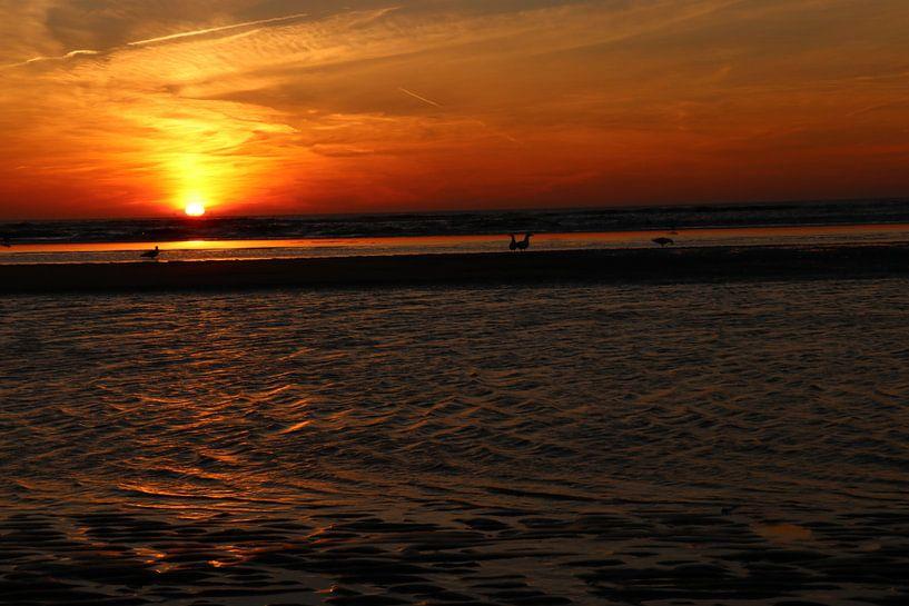 Zandvoort zonsondergang sur Veli Aydin