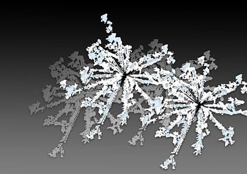 Zeefdruk art-kunst IJskristallen in grijs, wit en blauw van Marianne van der Zee