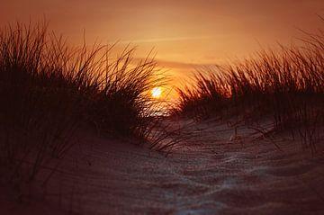 Sonnenuntergang in den Dünen von Florian Kunde