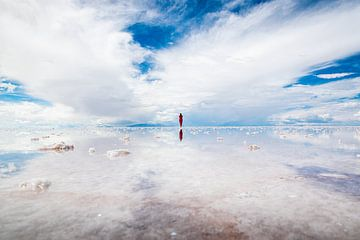 Bolivia, Salar de Uyuni, Zoutvlakte spiegelbeeld van Jelmer Laernoes