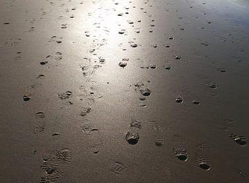 Ik krijg maar geen genoeg van het strand von Hans Heemsbergen