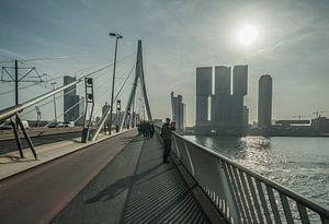 Erasmusbrug, Rotterdam van
