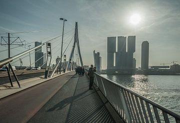 Erasmusbrug, Rotterdam von Daan Overkleeft