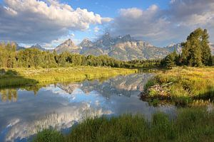 Grand Teton N.P.